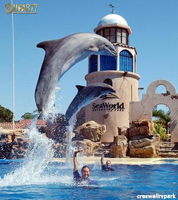 สวนสนุกในฟลอริดา